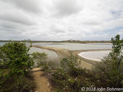 20180322 Parke Sorsaka en Jan Thiel lagune (private hike)