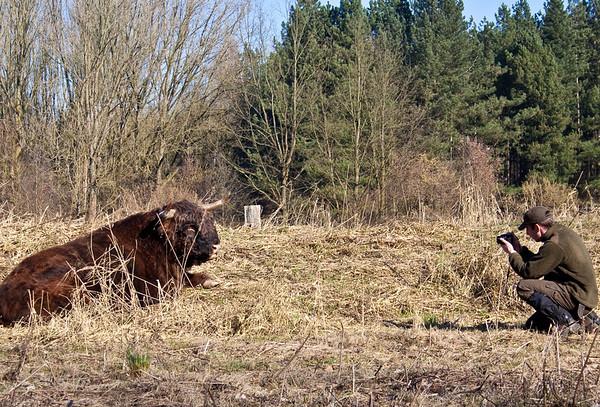 2012-02-22 Wandeling Harderbos