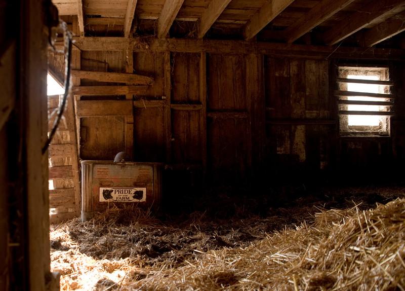 Sunshine in the barn
