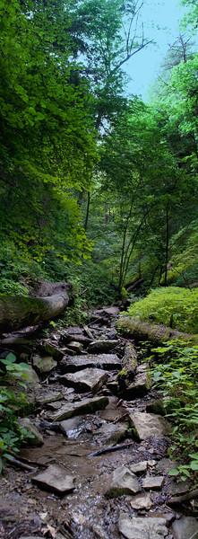 Shades State Park ravine hiking
