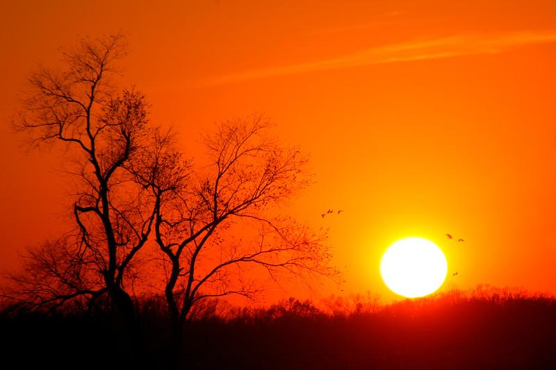 Sunset at Jasper Pulaski State Fish & Wildlife Area