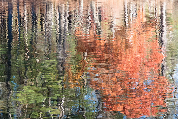 late afternoon reflection as impressionist painting