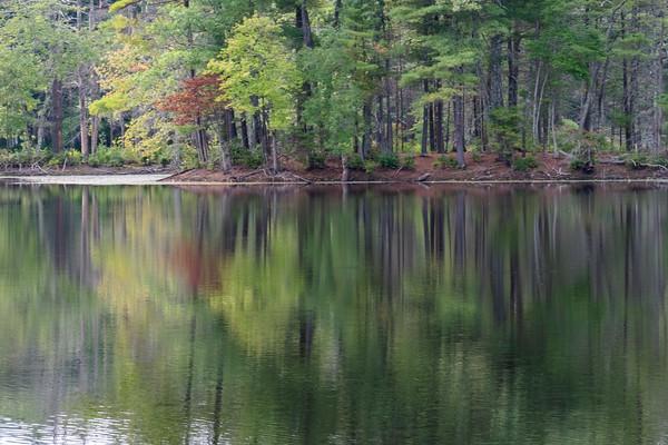 reflection, Harold Parker State Forest