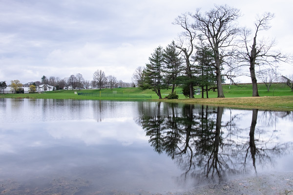 trees reflecting in a pond, on the campus of the Brooks School
