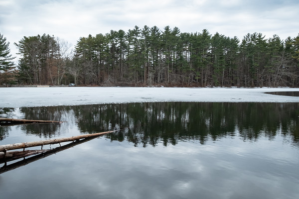 ice and water, Harold Parker State Forest