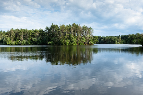 late day light on a pond at Harold Parker State Forest