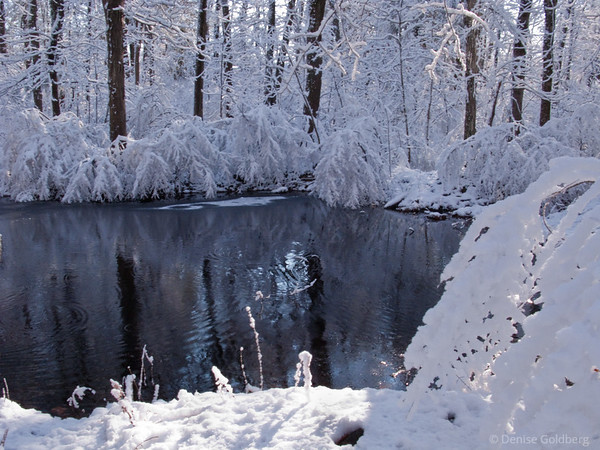 snow, water, reflections