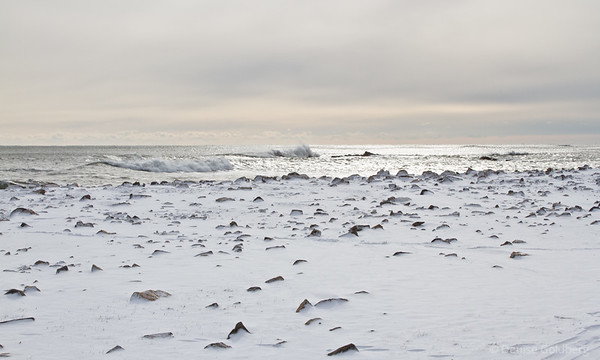 snow and crashing waves, Odiorne Point State Park, Rye, NY