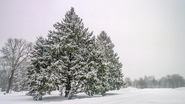 falling snow, tree decorations