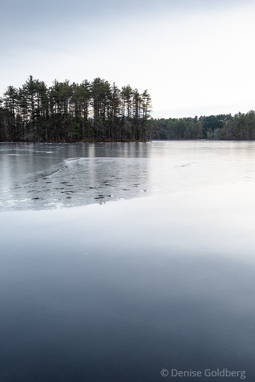 a skim of ice on a pond at Harold Parker State Forest