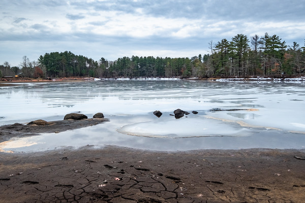 Field Pond, Harold Parker State Forest