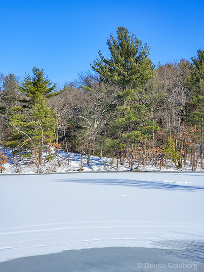 blue sky over snow