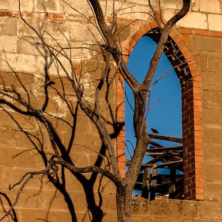 Duke's Castle, Van Horn, Texas