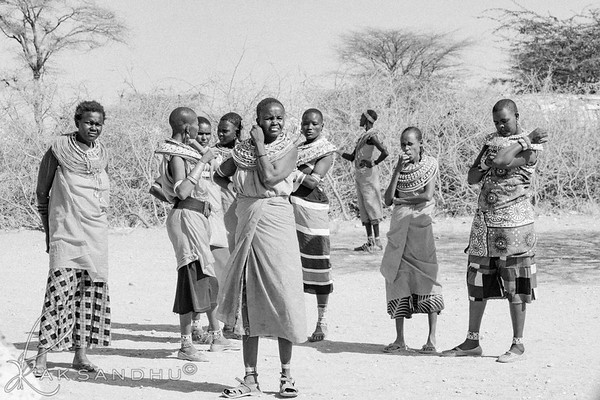 Safari-Africans-016