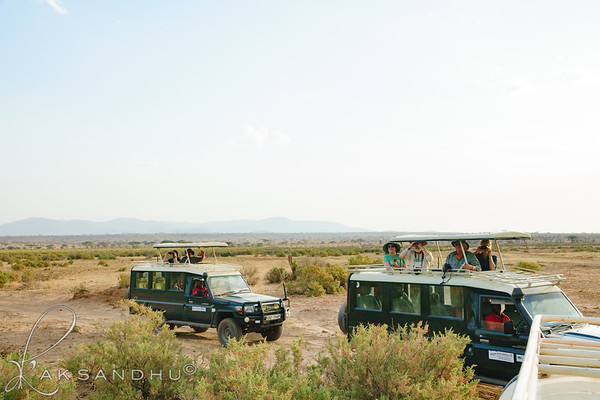 Safari-Africans-006