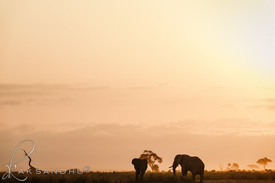 SunInAfrica-023