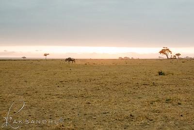 SunInAfrica-015