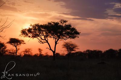 SunInAfrica-028