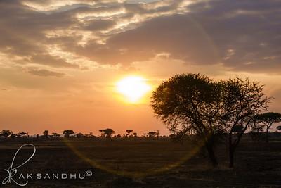 SunInAfrica-026