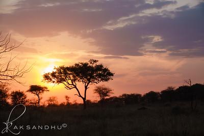 SunInAfrica-027