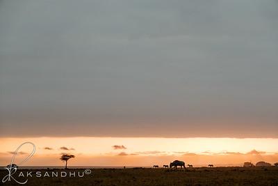 SunInAfrica-010
