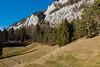 Die steilen Felswänd sind unter anderem Lebensraum des Wanderfalken