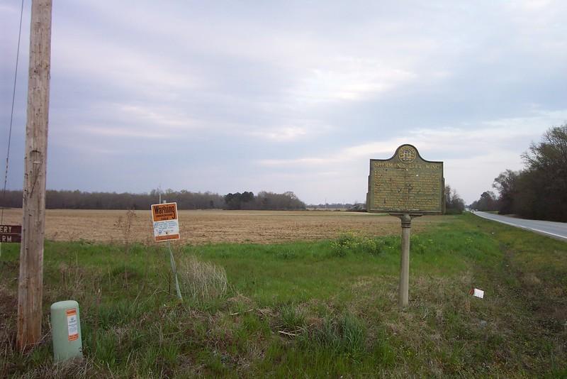 Rt. 17 & Jones Plantation Rd. 3