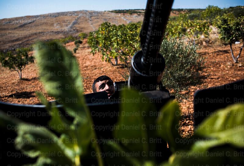 Rural Syria 3