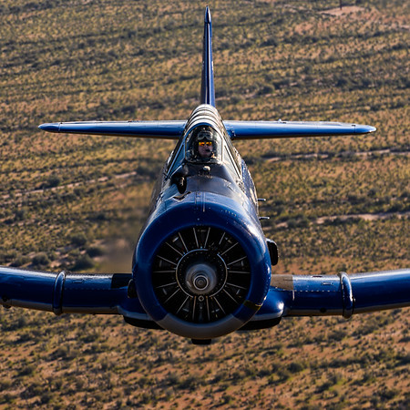 Restored T-6 Texan from the CAF Arizona Wing during a photo flight with 3G Photography Workshops.