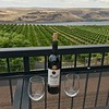 Shaw and McArdle's view from Maryhill Winery in Washington State.