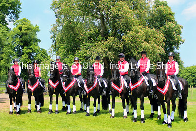 Horses_Lynne