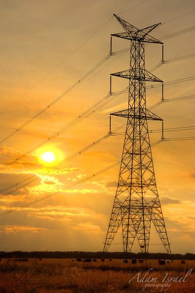 Paddock Powerlines - Mortlake, VIC