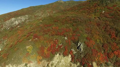 1-The road up Farmington Canyon