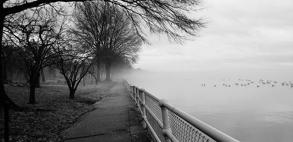 Foggy Morning along the Potomac