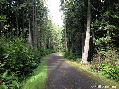 Beautiful bike trail near Sequim