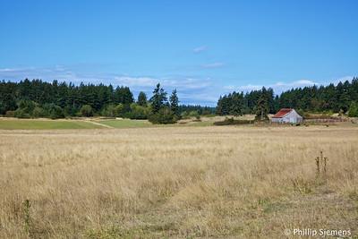 Prairie on San Juan Island.