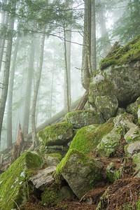 Mossy Rockiness