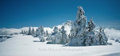 Snow Souls