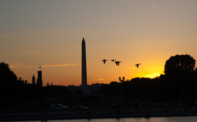 DC in the morning