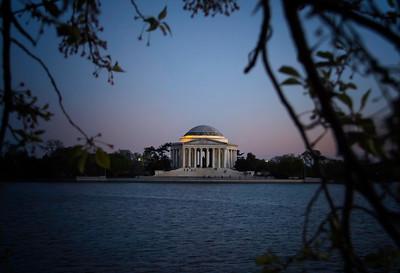 Washington DC 2016 (896)-300