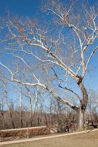 Great Falls Park, Maryland, Dec 2013