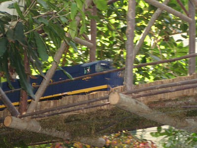 A train screeching by at the U.S. Botanical Gardens - Washington, DC ... November 5, 2005 ... Photo by Rob Page III
