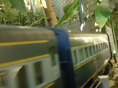A train at the U.S. Botanical Gardens - Washington, DC ... November 5, 2005 ... Photo by Rob Page III