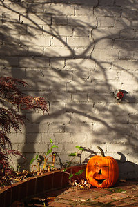 The pumpkin lurks in the shadows on Halloween - Washington, DC ... October 31, 2006 ... Photo by Rob Page III
