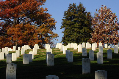 Arlington National Cemetary on Veteran's Day - Washington, DC ... November 11, 2006 ... Photo by Rob Page III