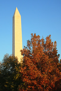 The Washington Monument - Washington, DC ... October 22, 2008 ... Photo by Rob Page III