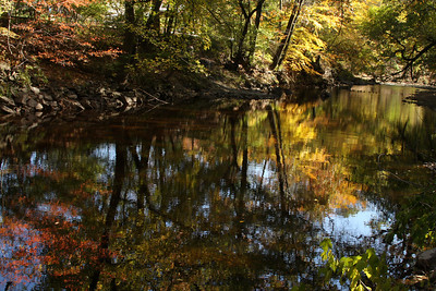 Down along the Rock Creek - Washington, DC ... October 30, 2008 ... Photo by Rob Page III
