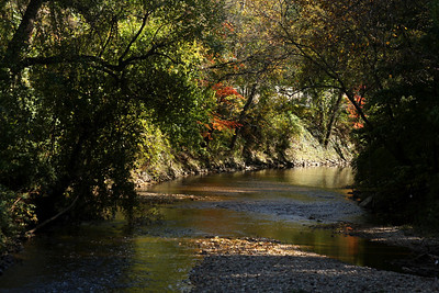 The Rock Creek - Washington, DC ... October 30, 2008 ... Photo by Rob Page III