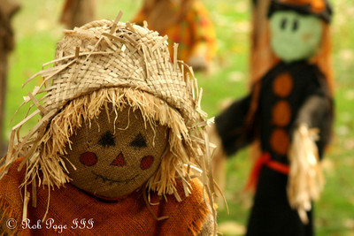 A scarecrow at the National Zoo with a witch about to attack - Washington, DC ... October 24, 2009 ... Photo by Rob Page III
