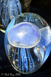 Glass jellyfish - Washington, DC ... November 15, 2009 ... Photo by Emily Page